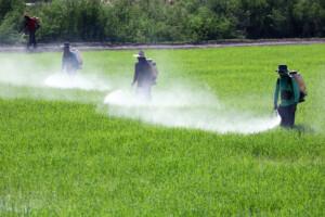 shutterstock_129570608-men-spraying-pesticides